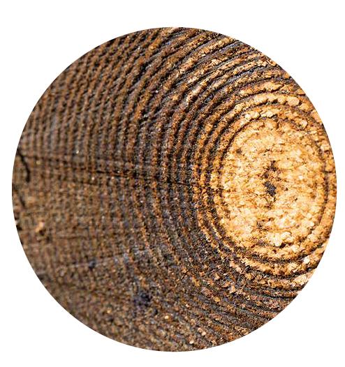 Nordic Timber
